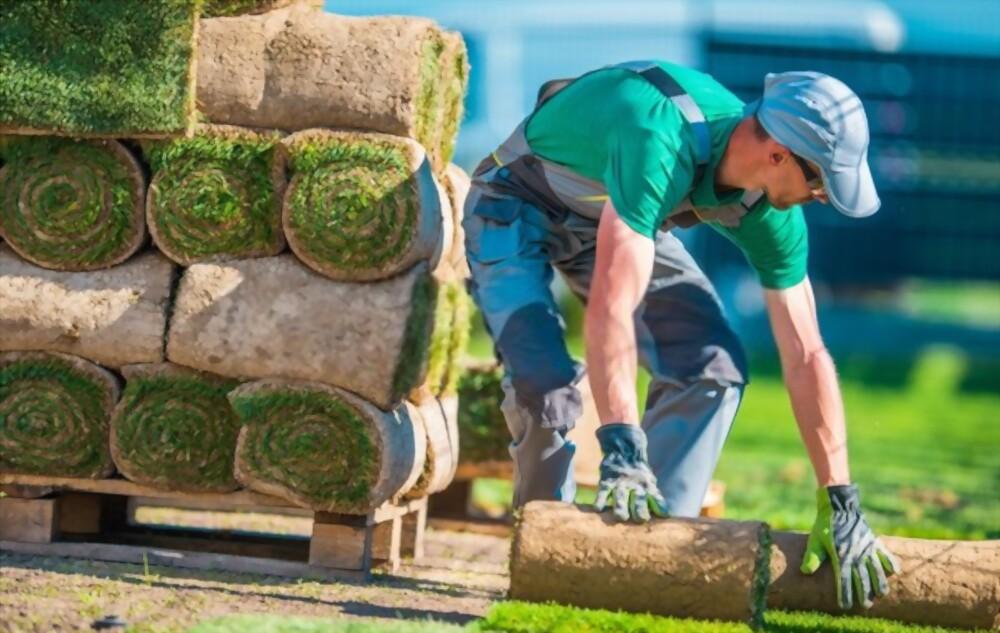 Hire A Professional Landscaper When Preparing To Install A Backyard