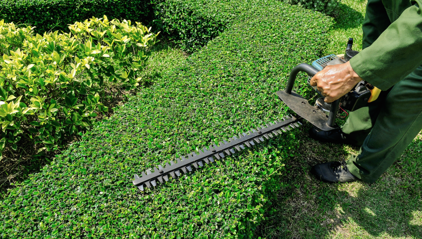 What is Landscaping & How does Landscape work?
